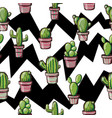 cactuses on a geometric background vector image