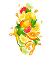 citrus fruits juice drops colorful composition vector image