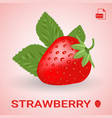 single fresh ripe strawberry with leaves vector image