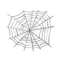 spiderweb web spider vector image