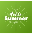 Hello Summer text on green background vector image