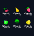 fruits and berries in flat vector image