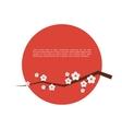 Sakura blossom greeting card vector image