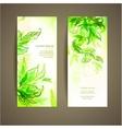 Set of abstract natural card vector image