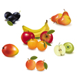 ripe fruit vector image