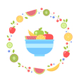Flat fresh fruits collection circle card vector image