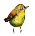 Cute birds for your design watercolor vector image