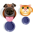 Cat dog food bowls vector image