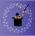 magic hat with owl vector image