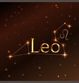 fire symbol of leo zodiac sign horoscope vector image