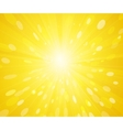 Yellow sunny rays background vector image