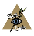 Color vintage tarot cards emblem vector image
