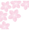 Sakura flowers Japan blooming pink cherry blossom vector image