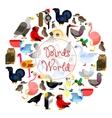 Birds world zoo emblem Cartoon bird icons vector image vector image
