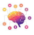 Human Brain - Colored Polygon Infographic vector image