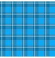 Blue plaid fabric vector image vector image