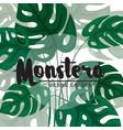 modern tropical background design vector image