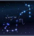water symbol of scorpio zodiac sign horoscope vector image