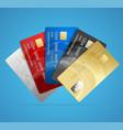 credit plastic card set vector image