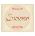 Enjoy summer now poster vector image