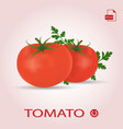 Set of two fresh ripe tomatos with leaves vector image