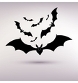 halloween bat background on the gray background vector image