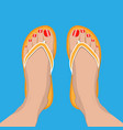 female feet with red pedicure in summer flip-flops vector image