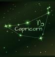 earth symbol of capricorn zodiac sign horoscope vector image