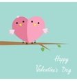 couple bird cartoon cute nature blue pink vector image