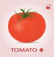 single fresh ripe tomato isolated on a background vector image