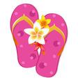 flip flop sandals vector image