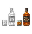 whiskey glass with ice cubes and bottle label with vector image