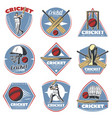 colored vintage cricket logos set vector image