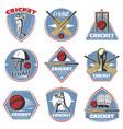 colored vintage cricket logos set vector image