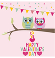 Valentines day owls vector image