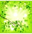 Spring light background vector image