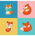 Fox characters cute and cards vector image