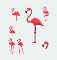 pink flamingo icons set pixel art style vector image