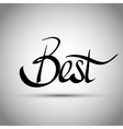Best hand lettering - handmade calligraphy vector image