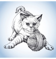A cute cat playing with a ball of wool vector image vector image