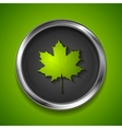 Green summer maple leaf on metal button vector image