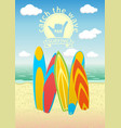 poster design with surf boards vector image