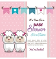 card baby shower twins sheep design vector image