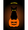 Happy Halloween Black cat sits on pumpkin at night vector image