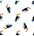 seamless pattern with toucans vector image
