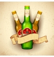 Beer Bottle with Ribbon vector image
