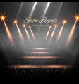stage enterance with spot lights vector image