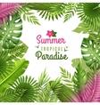 Tropical Foliage Decorative Background Frame vector image