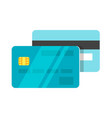 flat style of credit card vector image