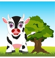 Cow on meadow vector image